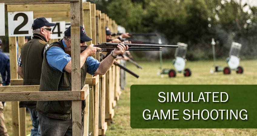 simulated game shooting