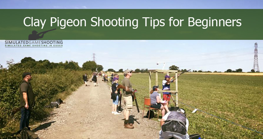 clay pigeon shooting begginers guide